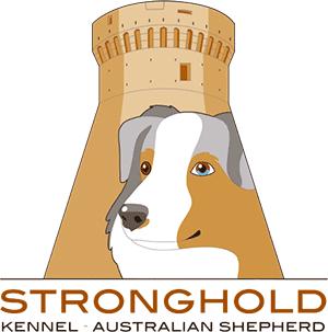 Allevamento Australian Shepherd - Stronghold