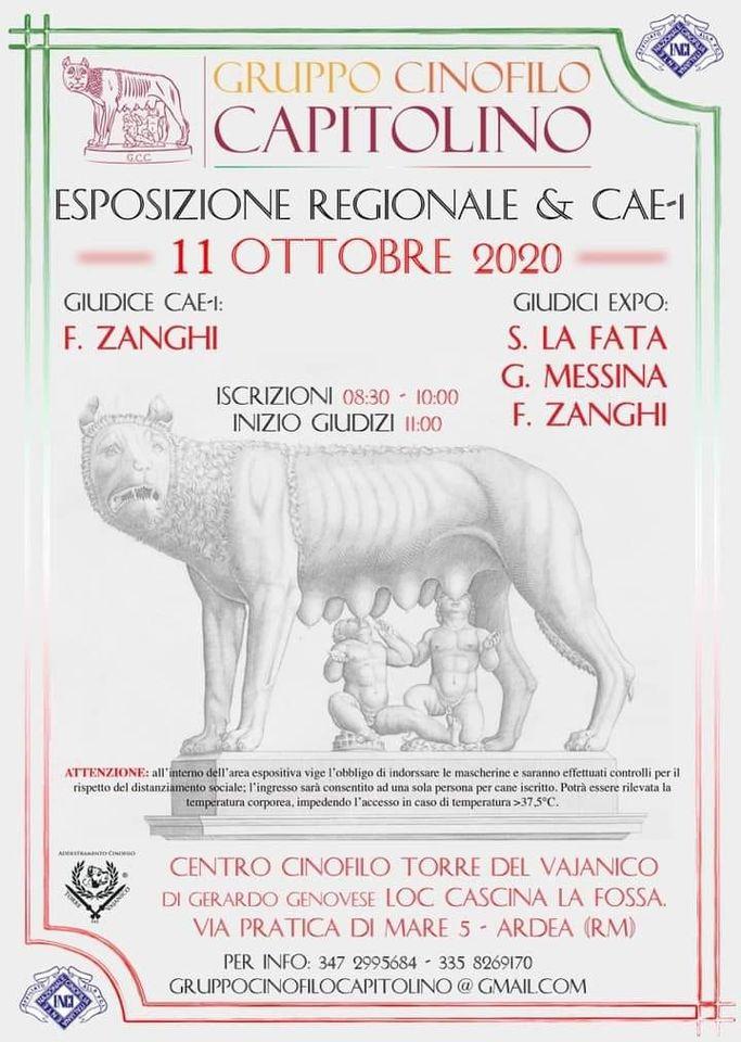 Expo Regionale & CAE-1