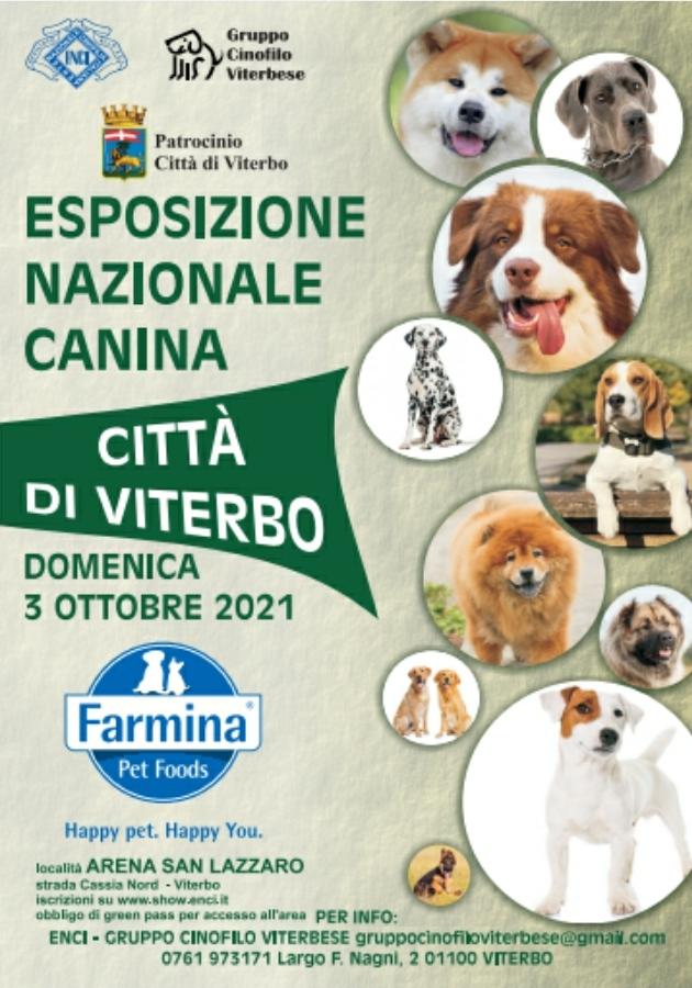 Esposizione Nazionale Canina ''Città di Viterbo'' - 3 Ottobre 2021